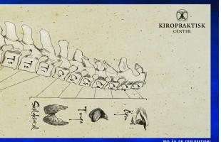 Kiropraktisk Center Print