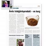 KORBO_press10